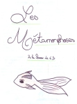 Metamorphoses 6D